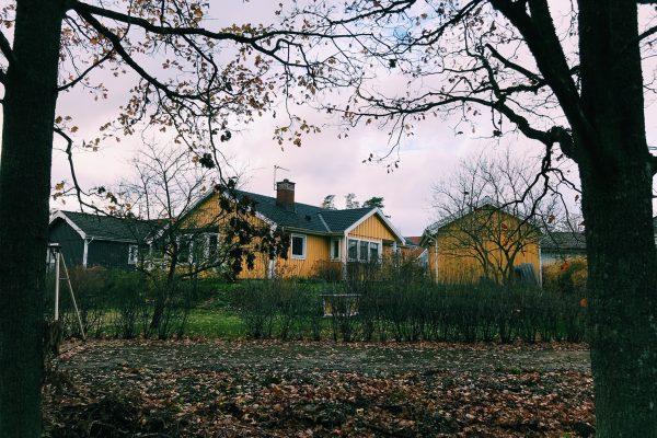 Een huisje aan het bos