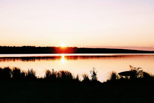 Zweden, het stille land